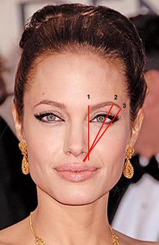 eyebrow perfect